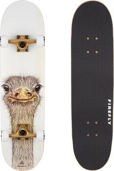 FIREFLY SKB 505 Skateboard weiß
