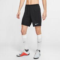 Dri-FIT Park 3 Shorts