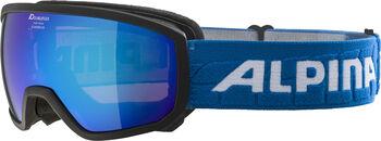 ALPINA Scarabeo HM Skibrille schwarz