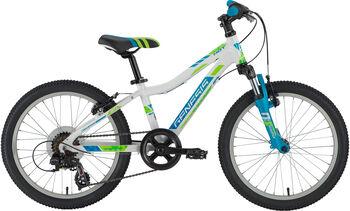 "GENESIS HOT 20"" Mountainbike weiß"