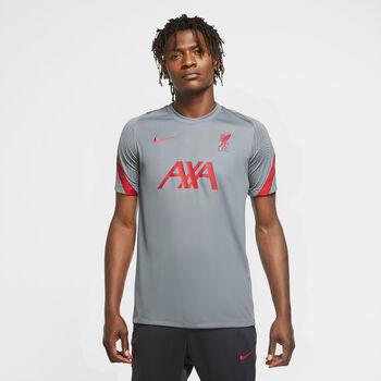 Nike Liverpool FC Fanshirt Herren grau