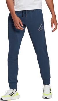 adidas Graphic Trainingshose Herren blau