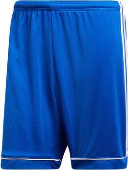 adidas Squad 17 Shorts Herren blau
