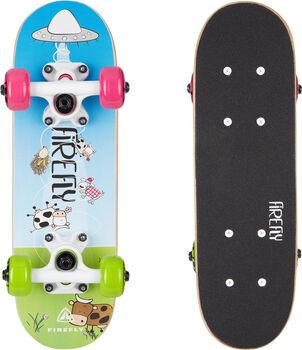 FIREFLY SKB 055 Skateboard blau
