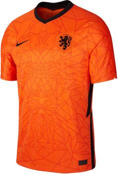 Nike Niederlande 20/21 Heimtrikot Herren orange