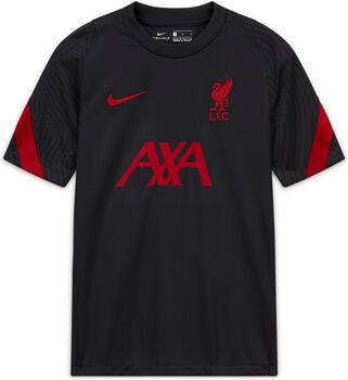 Nike Liverpool FC Fanshirt grau
