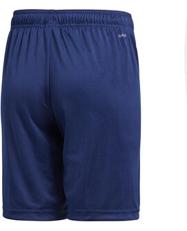 Core 18 TR Shorts