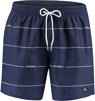 O'NEILL Pm Contourz Shorts Herren blau