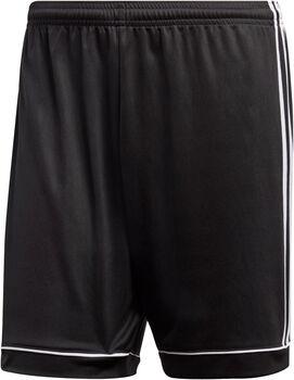 adidas Squad 17 Shorts Herren schwarz