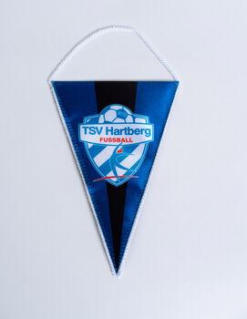 NOBRAND TSV Hartberg Wimpel Logo Herren weiß