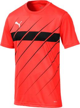 Puma ftblPLAY Graphic Fußballtrikot Herren rot