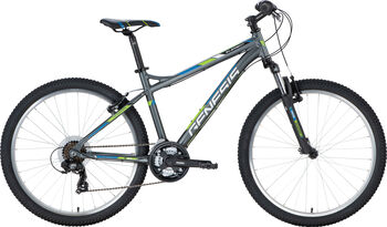 "GENESIS Element X-10 Mountainbike 26"" grau"