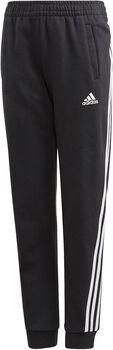 adidas 3-Streifen Tapered Leg Trainingshose schwarz