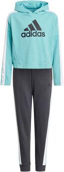 adidas Colorblock Crop Top Trainingsanzug grün