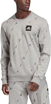 ADIDAS Must Haves Graphic Sweatshirt Herren grau