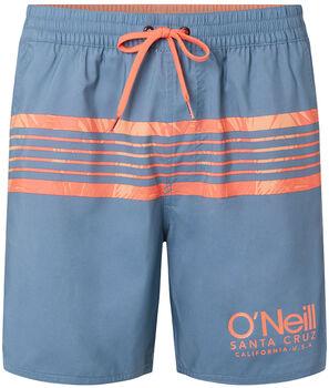 O'Neill Pm Cali Stripe Badeshorts Herren gelb