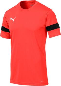 Puma ftblPLAY Fußballtrikot Herren rot