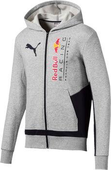 Puma RBR Logo Kapuzenjacke Herren grau
