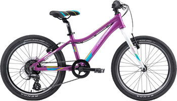 "GENESIS Evolution Girl 20 Lite Mountainbike 20"" pink"