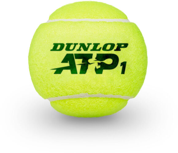 Championship ATP Tennisbälle