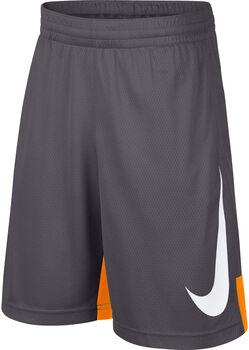 Nike Dry Short Hbr Short Jungen grau
