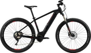 "GENESIS E-Pro MTB 2.0 PT E-Mountainbike 29"" schwarz"