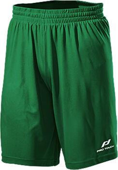 PRO TOUCH Pro Shorts grün