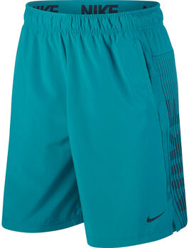 Nike  Dry Short 4.0 Lv Short Herren grün