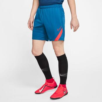 Nike Dri-FIT Academy Pro Shorts blau