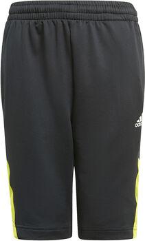 adidas Predator Shorts schwarz