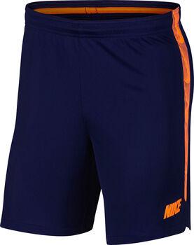 Nike Dry Squad Shorts Herren blau