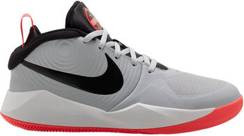 Nike Team Hustle D 9 Big Basketballschuhe grau
