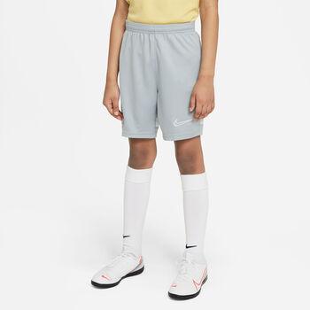 Nike Dri-FIT Academy Shorts Jungen grau