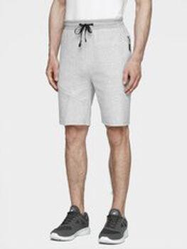 4F Shorts Herren grau