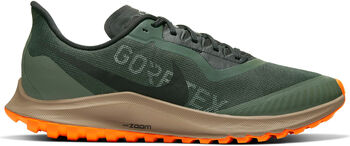 Nike Zoom Pegasus 36 GTX Traillaufschuhe Herren grün
