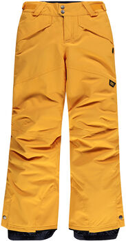 O'Neill Pb Anvil Snowboardhose gelb