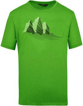 Salewa Lines Graphic T-Shirt Herren grün