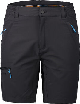 Icepeak Berwyn Shorts Herren grau