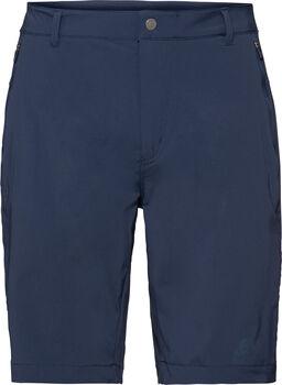 Odlo CONVERSION Shorts  Herren blau