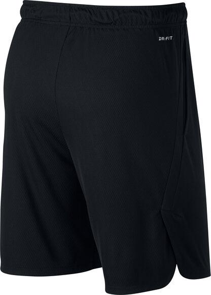 Dri-Fit Shorts