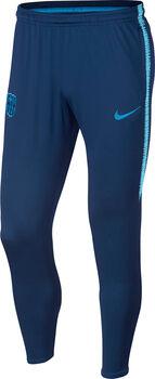 Nike FCB Trainingshose Herren blau