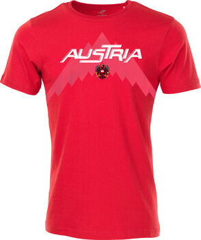 ENERGETICS EM 2020 Fan T-Shirt Herren pink