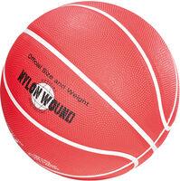 Dunk Basketball
