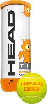 Head T.I.P Orange 3-er Pack Tennisbälle gelb