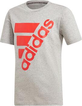 ADIDAS Big BOS T-Shirt grau