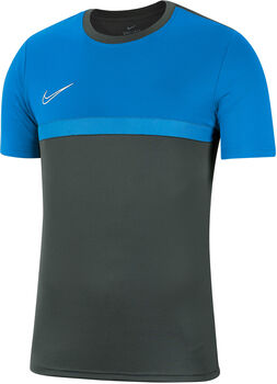 Nike Dri-FIT Academy Pro T-Shirt Herren grau