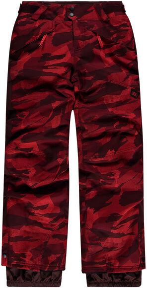 Pb Aop Pants Snowboardhose