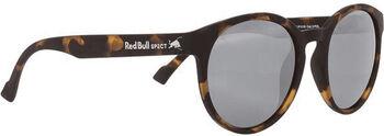 Red Bull Spect Lace Sonnenbrille Herren cremefarben