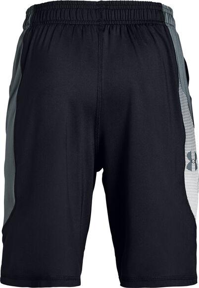 Raid Shorts