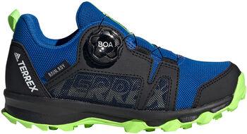 adidas TERREX Agravic Boa RAIN.RDY Wanderschuhe blau